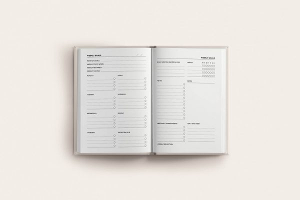 book spread weekly goals planner